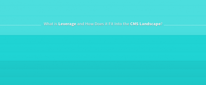 Leverage and the CMS Landscape