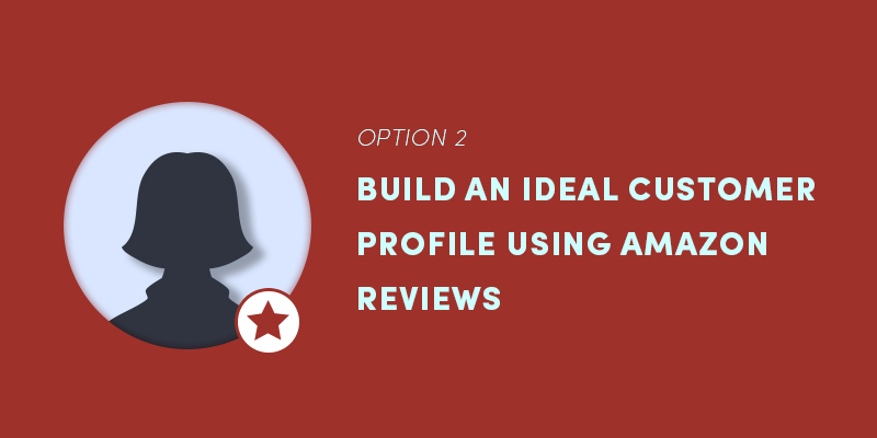 Option 2: Build an ideal customer profile using Amazon reviews